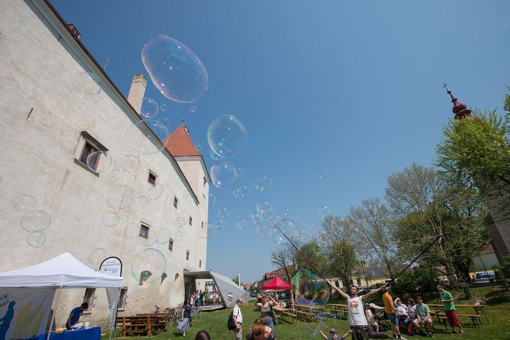 SCI-Freiwilligen-Gruppe packt erneut im Nationalpark Donau